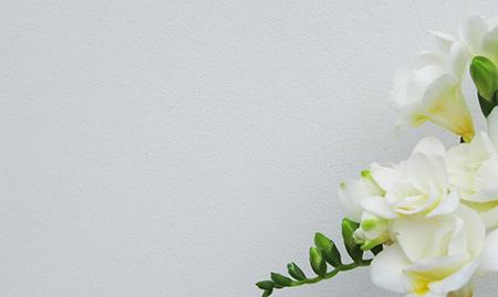 Wandbeschichtung von Emoton plastikfrei zertifiziert von horrydoo