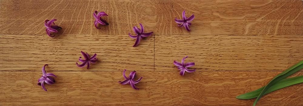 Durch natürliche Pflege den Holzboden dauerhaft schützen von horrydoo